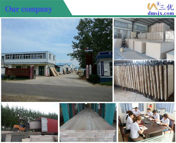 Vendita paulownia legname e paulownia legno prezzo caldo for Paulownia legno mobili