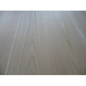 AA grade hot sale high quality paulownia wood for solid wood furniture