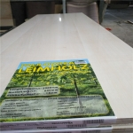 China paulownia panels shrink wrapped individually with leaflet for DIY factory